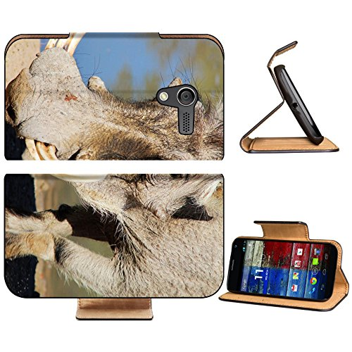 Motorola X 1st Generation Flip Case Warthog Portrait of an old timer with big tusks Photographed in Namibia IMAGE 20378066 by MSD Customized Premium Deluxe Pu Leather generation Accessories HD Wifi Lu
