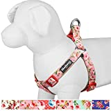 Blueberry Pet Step-in Spring Scent Inspired Floral Rose Baby Pink Dog Harness, Chest Girth 16.5' - 21.5', Small, Adjustable Harnesses for Dogs