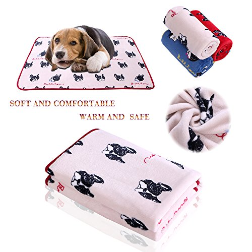 Lucky Home Pet Blanket for Dog Cat Puppy Kitten Sleep Blanket Warm Fleece Blanket Machine Washable for All Small or Medium Animals Super Soft Mat for Bed Couch Sofa Funny Print 40