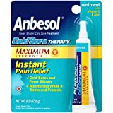 Anbesol Maximum Strength Coldsore Therapy Treatment (0.33 Ounce Tube)