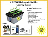 Hydroponic system Complete DWC BUBBLER Kit, # 3-6 by H2OtoGro For Sale