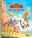 Eye in the Sky (Disney Junior: The Lion Guard) (Little Golden Book)