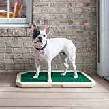 PetSafe Piddle Place Indoor Outdoor Dog Potty - Alternative to Puppy Pads - Indoor Restroom for Dogs