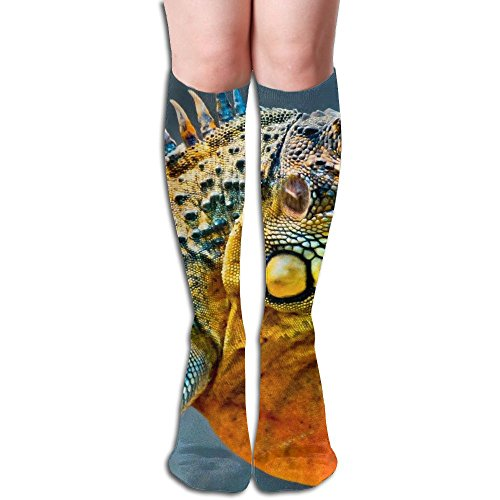 Long Stocking Big Animal Women's Over Knee Thigh Winter Warm Sexy Stocks Knitting Welt for $<!--$14.12-->