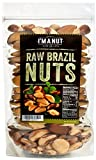 Raw Brazil Nuts 32oz (2 Pounds) Distinct and Superior to Organic, No PPO, Probiotic, Large,Fresh and Reasealable bag