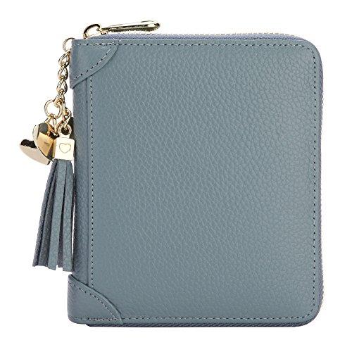 Credit Purse (SafeCard 40 Card Solts Women's Credit Card Case Wallet 2 ID Window and Zipper Card Holder (40 Card Blue))