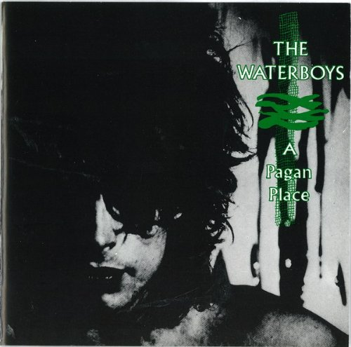 The Waterboys - A Pagan Place - [CD]