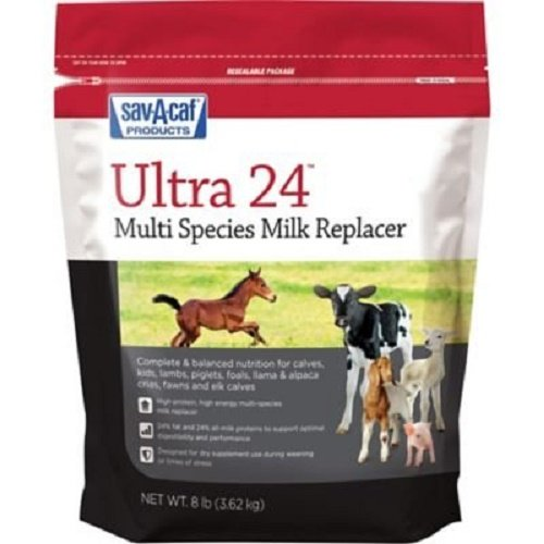SavACaf Grade A Ultra 24 Multi-Species Milk Replacer, 8 Pound Bag
