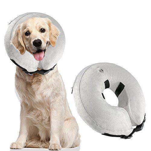 dogs cone collar - 4