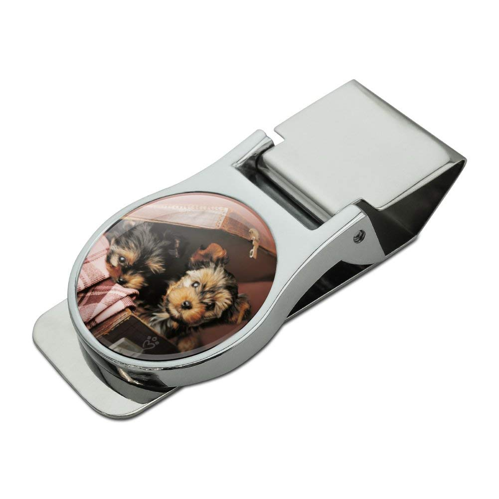 Yorkie Yorkshire Terrier Dogs Puppies in Briefcase Suitcase Satin Chrome Plated Metal Money Clip