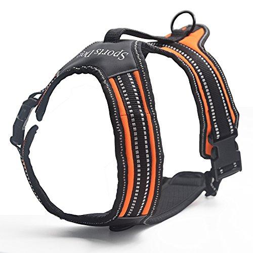 Rabbitgoo® Die Neueste Version Hundegeschirr Sicherheitsgeschirr Brustgechirr Mit Zugentlastung Verstellbar Größe (S, M, L)|Farbe:Orange Größe L