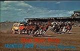 Chuck Wagon Racing - Frontier Days Cheyenne, Wyoming Original Vintage Postcard