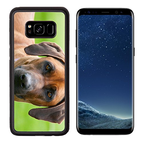Liili Premium Samsung Galaxy S8 Aluminum Backplate Bumper Snap Case A rhodesian ridgeback with an inquisitive face in Australia Photo 19380512 Simple Snap ()