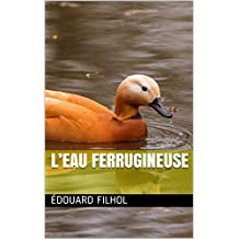 L'EAU FERRUGINEUSE (French Edition)