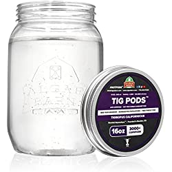 AlgaeBarn Tig Pods :: Live Copepods :: Tigriopus californicus Copepods :: Clean Your Tank :: Mandarin & Finicky Fish Food (3,000+ Pods)