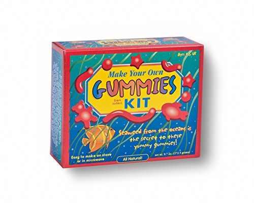 Make Your Own Gummies Kit DIY Gummy Making Kit