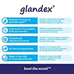 Glandex Dog & Cat Anal Gland Sac Fiber Supplement with Pumpkin, Digestive Enzymes & Probiotics - Vet Recommended Healthy Bowels and Digestion - Boot The Scoot 5.5 oz 11