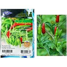 Thai Bird's eye Chilli Seeds Prik-Khee-Nu-Suan Grow your Own Organic Thai Herbs 106 quality seeds