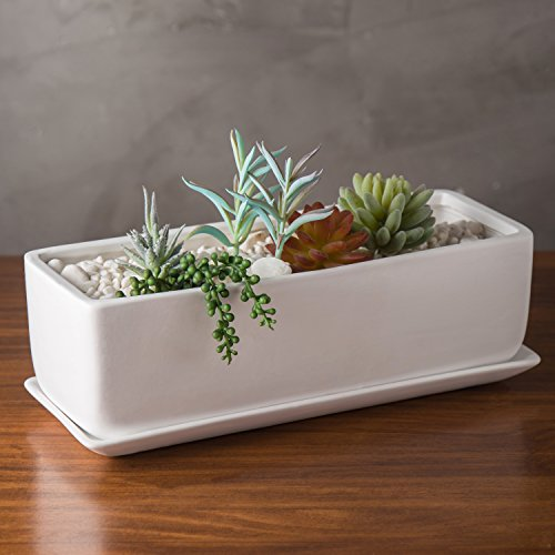 Bowl Arrangement (MyGift 14-Inch Rectangular Modern Ceramic Succulent Planter Pot, Window Box with Saucer, White)