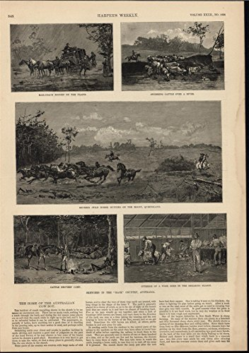 Outback Australia Mail Coach Wild Horse Hunting 1888 antique wood engraved - Australia Coach