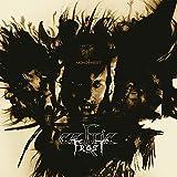 Celtic Frost: Monotheist (Re-Issue 2016) (2LP im Klappcover) [Vinyl LP] [Vinyl LP] (Vinyl)