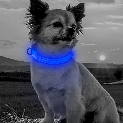 Collar Rechargeable Flashing Adjustable Reflective