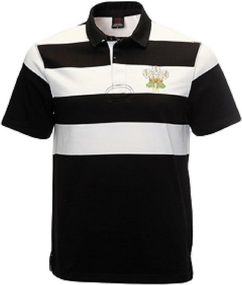 Manav (UK) Retro Plumas NZ de Gales Camiseta de Rugby de Gales ...