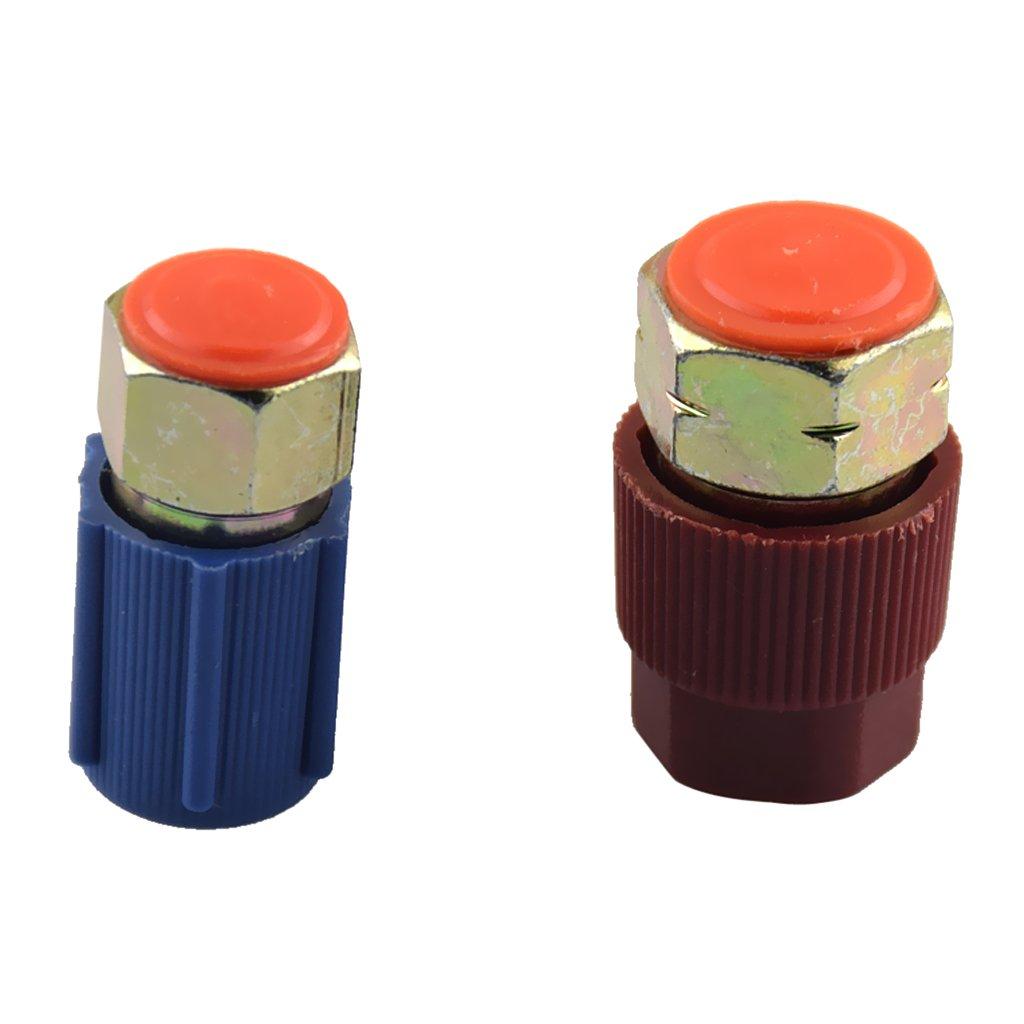 Sharplace AC Syst/ème Shrader Valve 19//22mm Capuchon R134 R12 HVAC de Voiture