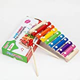 AMERTEER Xylophone for Kids: Best Holiday/Birthday DIY Gift Idea for your Mini Musicians, Musical Toy with Child Safe Mallets