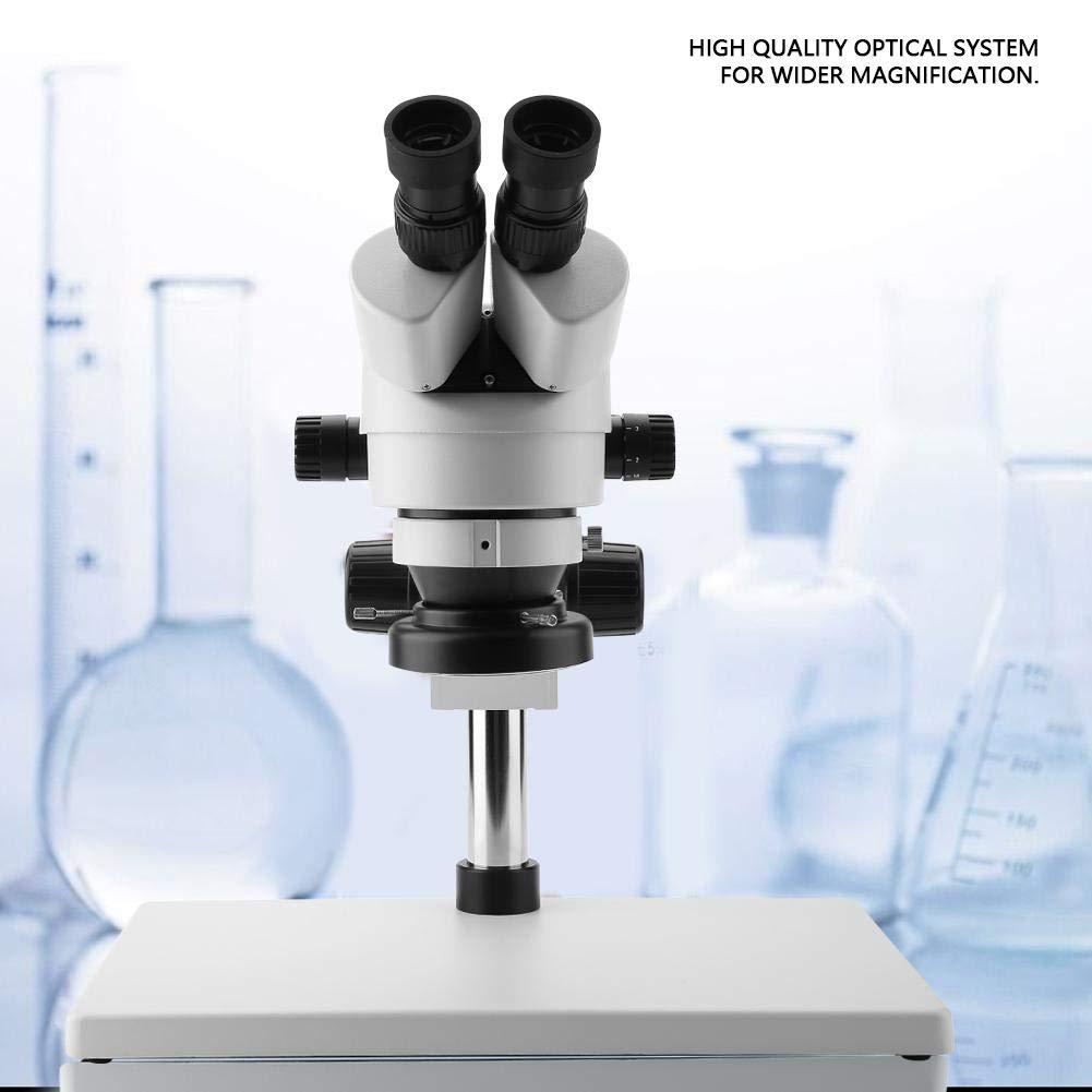 EU Plug Microscopio Binoculare WF10X // 20 Microscopio Stereo Oculari Zoom Obiettivo 0,7X-4,5X 100-240V per Riparazione Telefoni Cellulari Osservazione Minerale