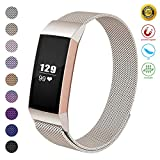 JOMOQ Metal Replacement Bands Compatible for Fitbit Charge 3 and Charge 3 SE Women Men Small Large, Stainless Steel Watch Accessory Wristband Magnetic Breathable Sport Bracelet Strap