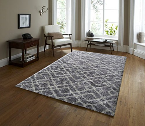 Cheap Adgo Vernazza Collection Modern Contemporary Jute Backed Shag Shaggy Area Rugs Tall Pile Height Well Spaced Soft and Fluffy Indoor Floor Rug (5′ x 7′, AL39B – Grey White)