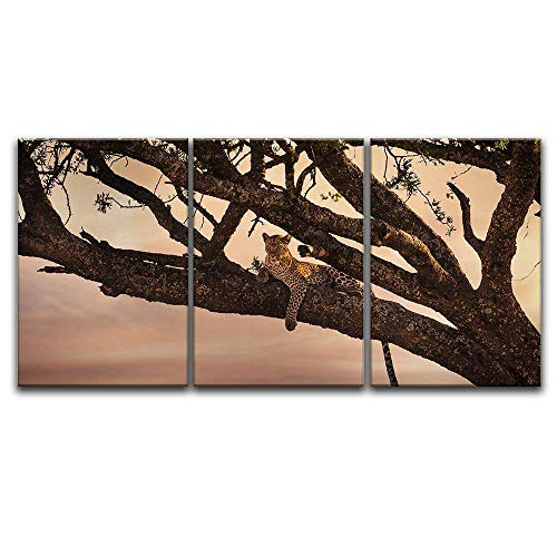 3 Panel Leopard Lying on a Tree Branch x 3 Panels