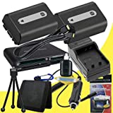 TWO NPFH50 Lithium Ion Replacement Batteries w/Charger + Mini HDMI + USB SD Memory Card Reader /Wallet + Deluxe Starter Kit for Sony DCRDVD508, DCRDVD408, DCRDVD308, DCRDVD108, DCRDVD505, DCRDVD405, DCRDVD305, DCRDVD205, DCRDVD105, DCRDVD403, DCRDVD203, D