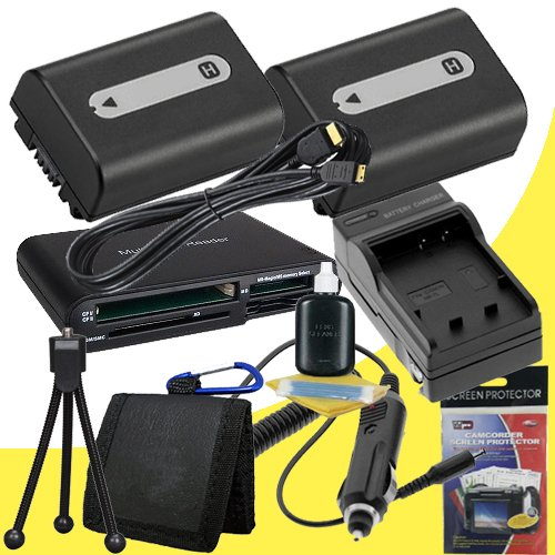 TWO NPFH50 Lithium Ion Replacement Batteries w/Charger + Mini HDMI + USB SD Memory Card Reader /Wallet + Deluxe Starter Kit for Sony DCRDVD508, DCRDVD408, DCRDVD308, DCRDVD108, DCRDVD505, DCRDVD405, DCRDVD305, DCRDVD205, DCRDVD105, DCRDVD403, DCRDVD203, D by DavisMAX