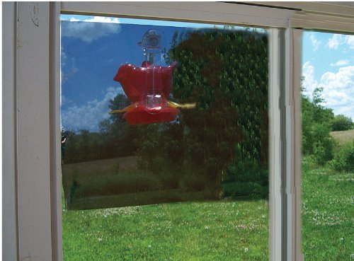 Songbird Essentials Two Way Window Removable