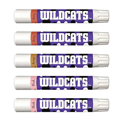 Northwestern Wildcats 5-Piece Shimmer Lip Balm Set. 3 Different Shades-Add That Pop of Color: Blush, Bronze, Berry. NCAA Gifts for Women, Mother's Day, Easter, Stocking Stuffers, Birthdays