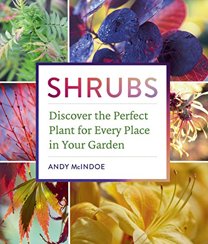 Shrubs: Discover the Perfect Plant for Every Place in Your Garden