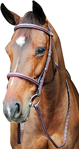 Padded Raised Bridle (Henri de Rivel HDR Pro Fancy Raised Comfort Crown Padded Bridle C)