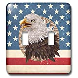 3dRose Beverly Turner Patriotic Design - Bald Eagle Circle Star Frame on American Flag Design, Red, White, Blue - Light Switch Covers - double toggle switch (lsp_290382_2)