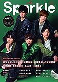 Sparkle Vol.29 (メディアボーイMOOK)