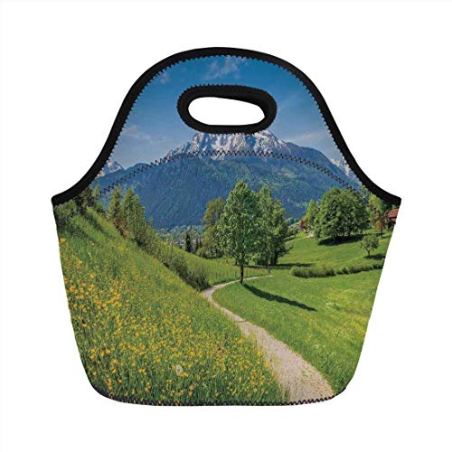 Portable Bento Lunch Bag,Apartment Decor,Spring Scenery in Alps with Floral Grass and Snowy Mountain Tops in Rural Village Photo,Multi,for Kids Adult Thermal Insulated Tote Bags