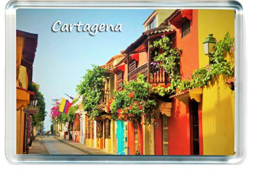H049 Cartagena Refrigerator Magnet Colombia Travel Fridge Magnet