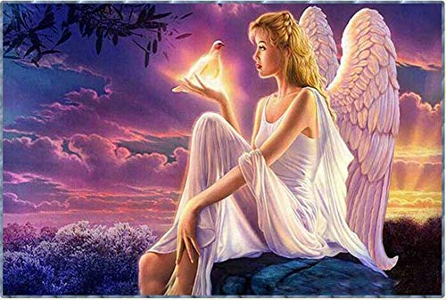New 5D Diamond Painting Kits for Adults Kids, Awesocrafts Angel and White Pigeon Full Drill DIY Diamond Art Embroidery Paint by Numbers with Diamonds (Angel)