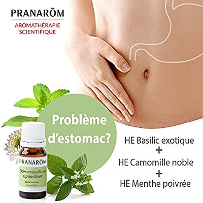 AEQT Menta Piperita Aceite Esencial: Amazon.es: Salud y cuidado ...