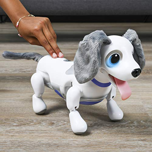 zoomer Playful Pup, Responsive Robotic Dog with Voice Recognition & Realistic Motion, For Ages 5 & Up