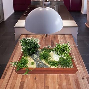 Miniaturgarten   Zimmergarten, Kleine Mobile Gartenanlage   Der Garten Für  Die Wohnung   Standard Buche