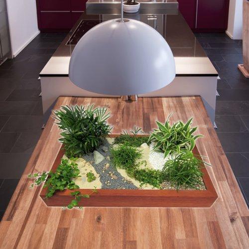 Miniaturgarten - Zimmergarten, kleine mobile Gartenanlage - der Garten für die Wohnung - Standard Buche, dunkel gebeizt