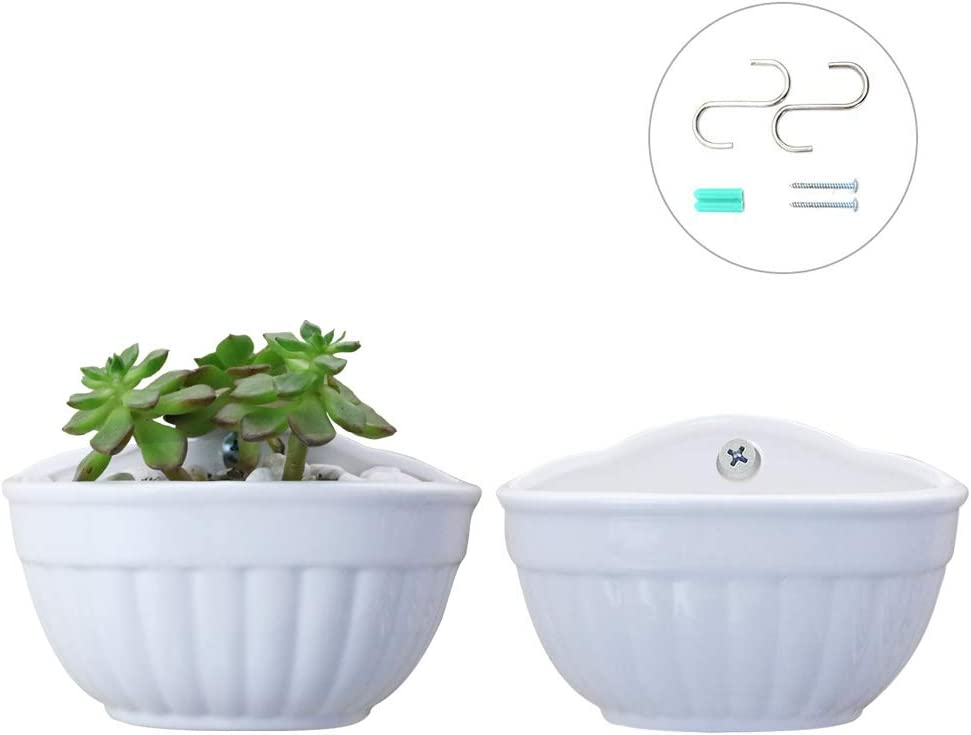 SQOWL 4inch Cute Small White Ceramic Wall Mount planters,Wall Hanging Succulent planters Indoor or Outdoor,Pack of 2