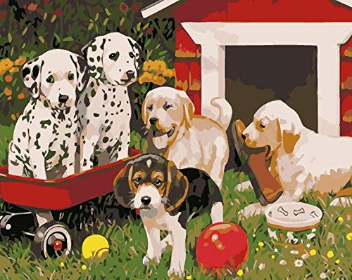 Regalo de Pintura al oleo para Adultos ninos por numeros cuadro Perro Animal Lscape- (40x50cm) -Marco de madera